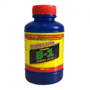 vitamin b1 thái vườn babylon