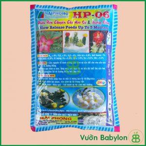 Phân Bón Chuyên Cho Hoa Sứ Xương Rồng HP-06